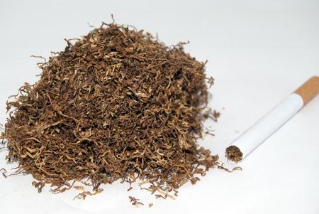 tabaco: tabaco