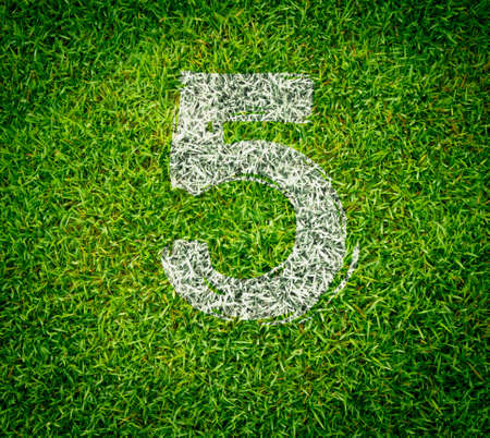 number collection - 5 on green grass seamless texture photo