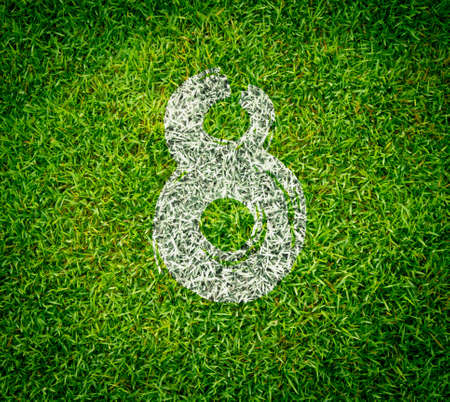 number collection - 8 on green grass seamless texture photo