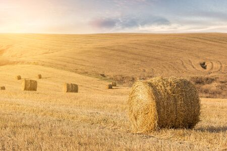 bales: Straw bales at sunset