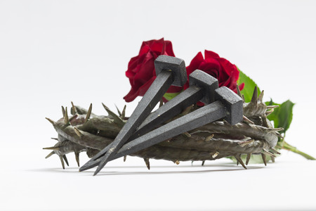 thorns and roses: Jesus Christ crown of thorns, nails and two roses on a white background. Stock Photo