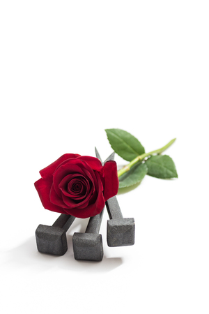 jesus rose: Jesus Christ nails from the Crucifixion and red rose on a white background.