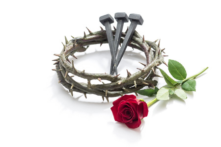 jesus rose: Jesus Christ crown of thorns, nails and a rose on a white background.