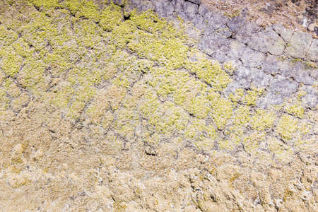 fastness: Natural stone texture, moss covered.