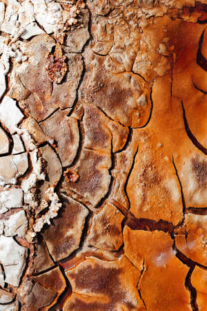 Texture of dry and cracked earth with striking colors on the banks of the Rio tinto. abstract pattern. abstract texture - abstract background - abstract design. Фото со стока
