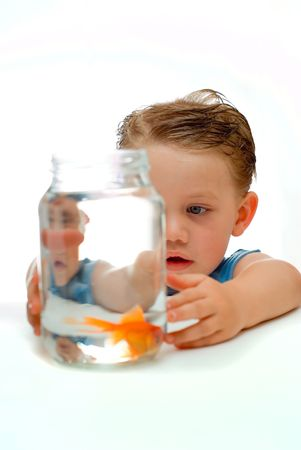 Curious young boy toddler looking and learning about goldfish in jar of water  photo