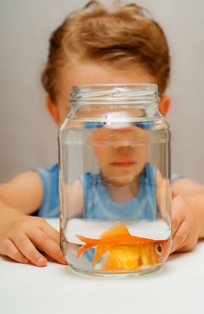 Scared goldfish with wide distorted eyes in water jar with toddler boy Stock Photo - 3019149
