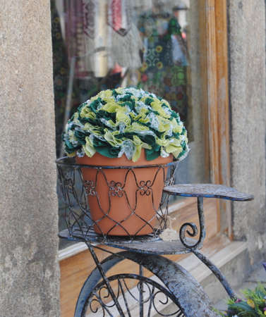 Flower pot on an old bicycle.