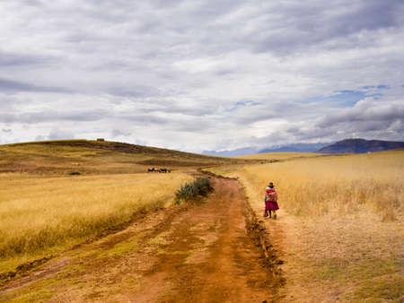 遠くの山々 と田園地帯に歩いて伝統的な赤いドレスのペルーの女性。