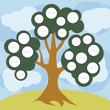 pedigree: Tree for photos  family vector, children, pedigree