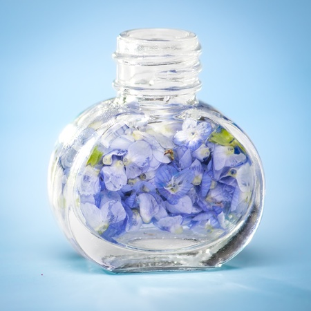 Flower petals in perfume like bottle. Very fresh, pure and beautiful look. photo