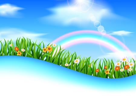 summer meadow: Summer meadow landscape with green grass
