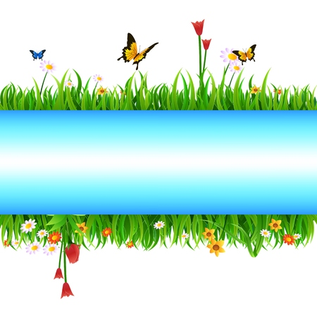 vector raster background: Summer meadow landscape with green grass