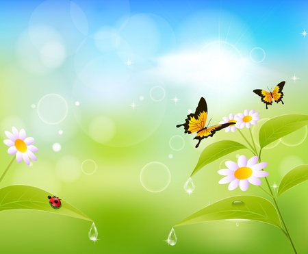 vector raster background: Nature summer background with leaves and butterfly