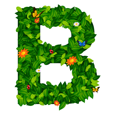 grass isolated: capital letter B from leaf on white background