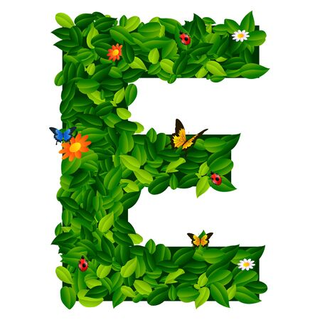 grass isolated: capital letter E from leaf on white background