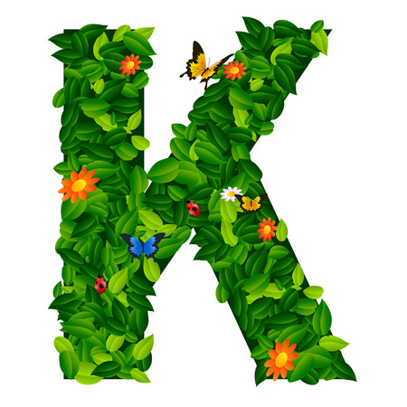 grass isolated: capital letter K from leaf on white background Illustration