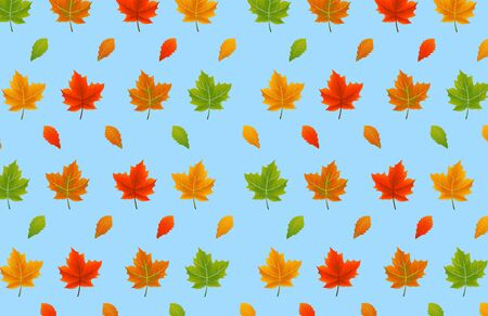wind down: Colorful autumn leaves of blue background