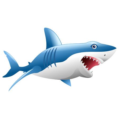 Wild shark attack on white background