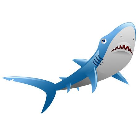 Wild shark on white background Illustration