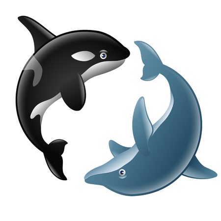 a pair of cute dolphin and killer whale