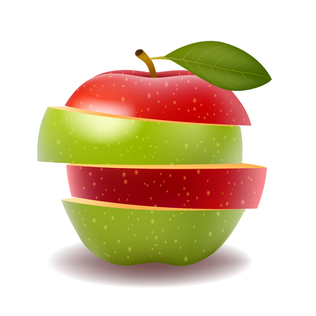 Red apple and Green apple slice isolated on white photo-realistic Illustration