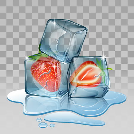 refrigerate: Ice cube with strawberry. Vector illustration