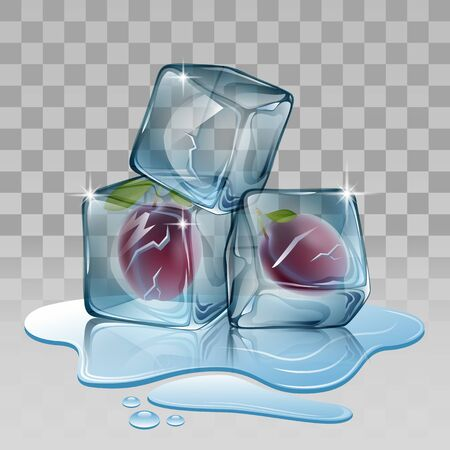 refrigerate: Ice cube with plum. Vector illustration
