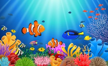 Clown Fish under the sea