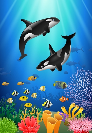 Killer whales cartoon with underwater view and coral background. Vector Illustration.