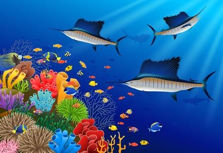 バショウカジキの下で水泳は水の図です。  イラスト・ベクター素材