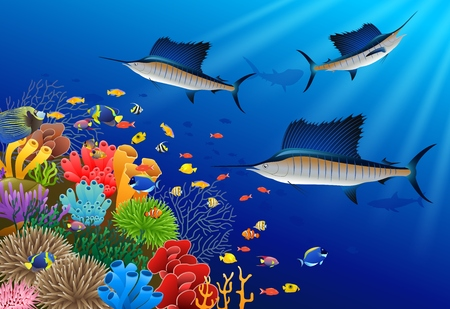 marline: Sailfish swimming under water illustration.