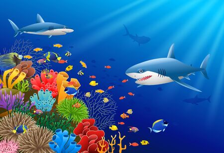 Shark under water illustration.