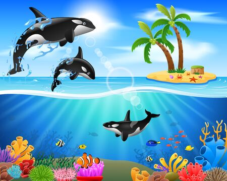 Cartoon killer whale jumping in blue ocean background. vector illustration Illustration