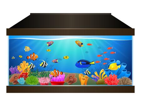 Aquarium with fish and corals. Marine aquarium. Vector illustration Illustration