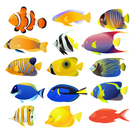 Set of different fish icon.