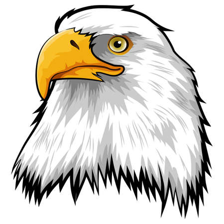 Mascot Head of Eagle Isolated on white background Vector illustration