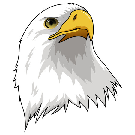 Mascot Head of Eagle Isolated on white background. Vector illustration
