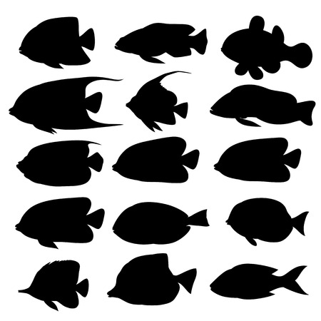 Silhouettes of sea fish animals isolated black and white. Vector illustration