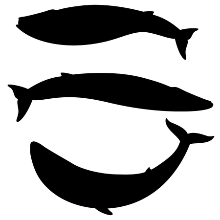 Set of silhouettes blue whale on a white background. Vector illustration