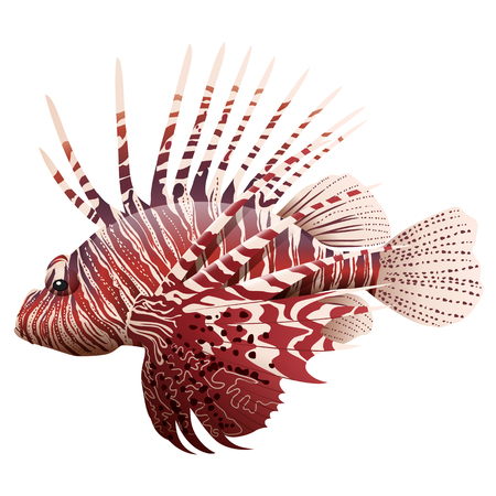 Cartoon lionfish isolated on white background. Vector illustration Stock Illustratie