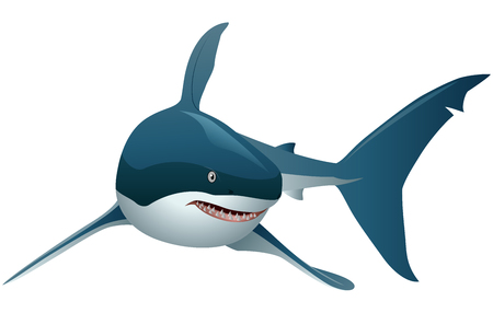 Cool cartoon shark. with simple gradients. All in a single layer. Vector illustration Stock Illustratie