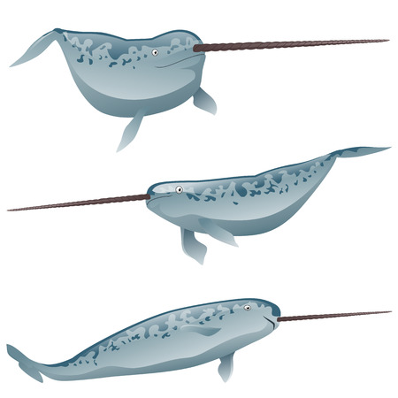 A set of exotic narwhal isolated on white background. Vector cartoon close-up illustration.