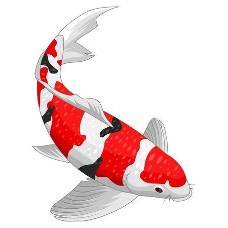 Éléments de conception de poisson koi rouge et or