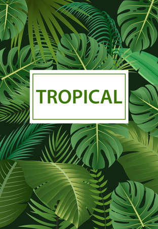 Jungle exotic composition tropical leaves pattern vintage green invitation holiday banners with palm