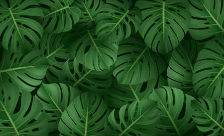 Tropical leaves collection. isolated elements on the white background.