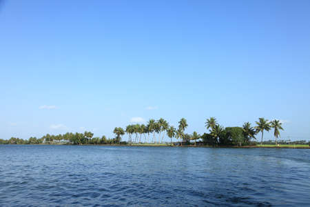 backwaters: Coconut trees and backwaters of Kerala, India.