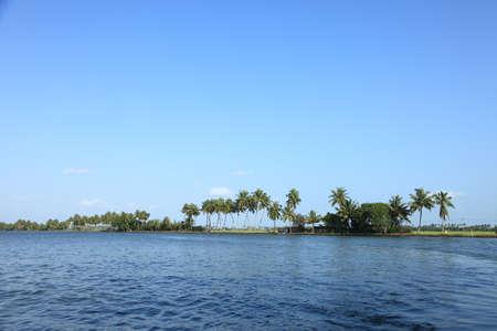 kerala backwaters: Coconut trees and backwaters of Kerala, India.