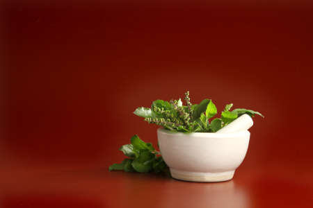 tulasi: Tulasi  Basil leaves in a pharmacy bowl
