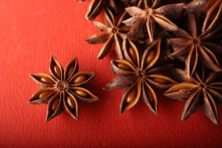 aniseed: Spice ingredient Aniseed in red background